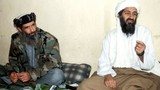 Bí mật bộ sưu tập băng cát xét của Osama Bin Laden