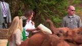 Video: Đệ nhất phu nhân Mỹ Melania Trump bị voi con húc vào người