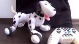Video: Chó Robot giám sát công trình xây dựng chặt chẽ đến từng chi tiết