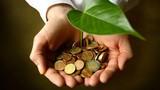 Phát triển mô hình kinh tế xanh: Kinh nghiệm quốc tế và trong nước