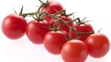 Cách dự trữ cà chua ăn trong vài tháng