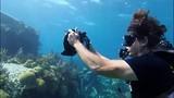 Khám phá tàu đắm dưới biển ở Tam giác Quỷ