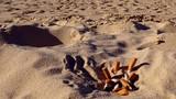 Thái Lan: Hút thuốc trên bãi biển có thể phải ngồi tù