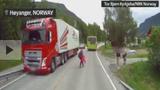Video: Hãy nắm tay trẻ nếu không muốn thấy cảnh đứng tim này