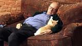 Kỳ lạ người đàn ông dành cả ngày để ngủ với... mèo