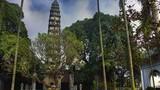 Những ngọn cổ tháp nổi tiếng Bắc Bộ