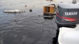 Ngăn 2.000 lít dầu tràn từ tàu cánh ngầm bốc cháy