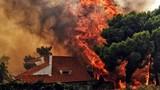 Những thảm họa kinh hoàng làm chao đảo cả thế giới năm 2018
