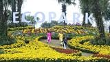 Điều trông thấy ở lễ hội hoa Xuân Ecopark