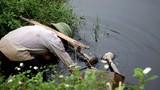Cảnh kinh hãi rau sống tưới nước thải đen thối ở Hà Nội
