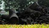 Ảnh: Lo ngại hỏa hoạn ở đống gỗ mục khô tại công viên Tuổi trẻ