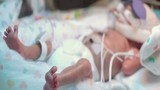 Clip cậu bé sinh non 3 tháng lay động hàng triệu người