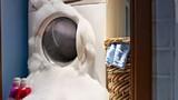 Vạch mặt thủ phạm khiến máy giặt đình công