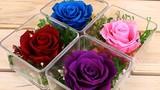 300.000 đồng nên mua hoa gì tặng người yêu ngày Valentine?