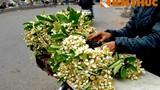 Kỳ lạ loài hoa bán theo lạng cực hút khách Hà Nội