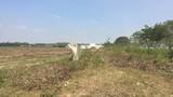 """KĐT """"ma"""" Nhơn Trạch: La liệt dự án bỏ hoang, chung cư không người ở"""