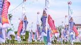 """Giới trẻ SG đón lễ tình nhân sớm ở """"cánh đồng cá Koi"""""""