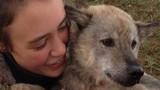 Thoát kiếp lên đĩa ở Việt Nam, chú chó đi lạc ở Pháp 9 ngày
