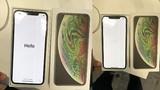 Giá hơn 2.000 USD, iPhone XS Max vừa mở hộp đã lỗi sọc màn hình