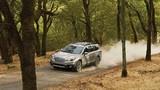 """Subaru Outback 2017 vừa ra mắt đã """"dính án"""" triệu hồi"""