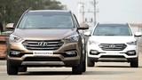 Hyundai Thành Công tạm ngừng nhập khẩu ôtô mới