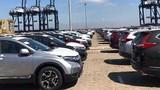 Honda và Toyota tạm ngừng xuất khẩu xe vào Việt Nam
