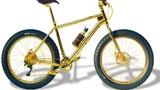 Ngỡ ngàng xe đạp bằng vàng và kim cương giá 21 tỷ