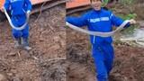 Thanh niên tay không bắt rắn hổ mang 2kg ở Thái Bình
