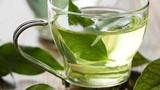 6 lý do để uống trà xanh mỗi ngày