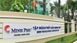 """""""Vua tôm"""" Minh Phú giảm 36% lãi suất trong 9 tháng, cổ phiếu """"lao dốc"""""""
