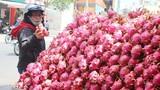 Dịch nCoV gây áp lực lên nền kinh tế Việt Nam như thế nào?