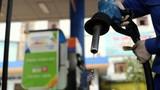 CPI tháng 12 tăng 0,1% nhờ xăng dầu, giá gạo tăng