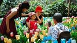 Khách kéo nhau chụp hình, giẫm nát vườn hoa hồng hoa tulip trong ngày đầu xuân