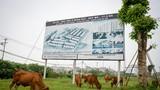 Bên trong KĐT 2.000 ha bỏ hoang Thủ tướng yêu cầu kiểm tra