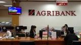 Agribank cảnh báo chiêu lừa đảo chiếm tài khoản ngân hàng của khách