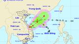 Dự báo thời tiết ngày 3/9: Áp thấp nhiệt đới đổi hướng, cả nước mưa lớn