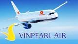 Sau bán lẻ, Vingroup tuyên bố ngừng dự án Vinpearl Air