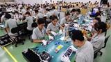 Chưa có thông tin về lao động Việt Nam tại Hàn Quốc nhiễm COVID-19