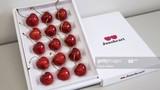 Cherry Nhật đắt kỷ lục, hơn 4 triệu đồng/quả có gì đặc biệt?