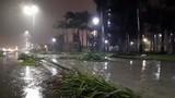 Các khu vực trên cả nước đêm mưa dông, ngày nắng, có nơi nắng nóng