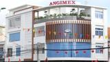Đầu tư dự án BĐS hơn 1.400 tỷ đồng, đại gia gạo Angimex làm ăn sao?