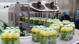 Bỏ vật lạ vào chai nước Tân Hiệp Phát, ẵm 500 triệu có dễ?