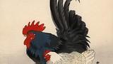 Mê đắm vẻ đẹp của gà trong tranh cổ Nhật Bản