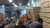 Phá đường dây làm giả 2,3 triệu găng tay y tế