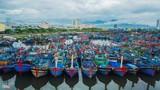 Cảng cá lớn nhất Đà Nẵng có thêm 20 ca dương tính với nCoV