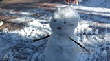 Video: Fansipan lúc mờ sáng trắng xoá băng tuyết