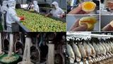 10 thực phẩm TQ độc hại khiến cả thế giới sợ hãi