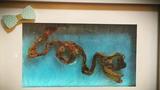 Trào lưu tạo hình nghệ thuật với dây rốn của các mẹ