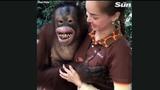 """Video: Sàm sỡ nữ nhân viên vườn thú, đười ươi """"cười hớn hở"""""""