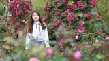 Tâm sự những người trồng hoa bằng…niềm tin trên các đỉnh núi
